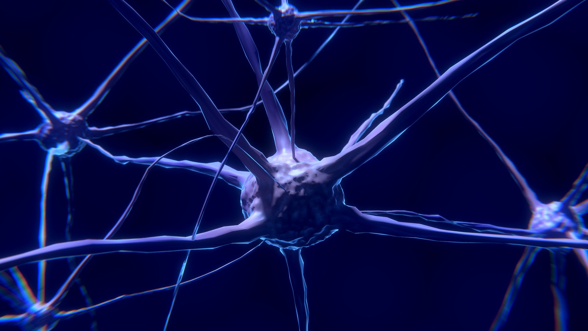 Plataforma Notícias Ordem Engenheiros Região Norte - Há Engenharia no combate da epilepsia