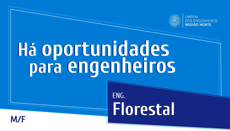 Plataforma Notícias Ordem Engenheiros Região Norte - [Emprego] Justacolina recruta engenheiro/a